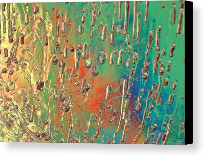 Ice Canvas Print featuring the photograph Lighthearted by Alan Buck