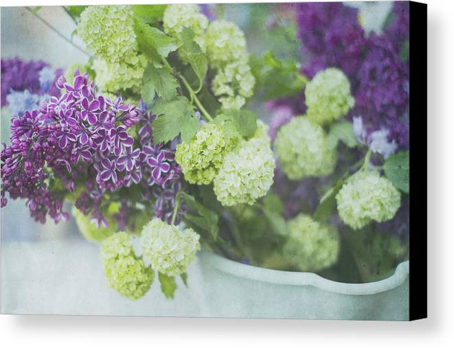 Lilacs Canvas Print featuring the photograph Lilacs And Snowballs by Rebecca Cozart