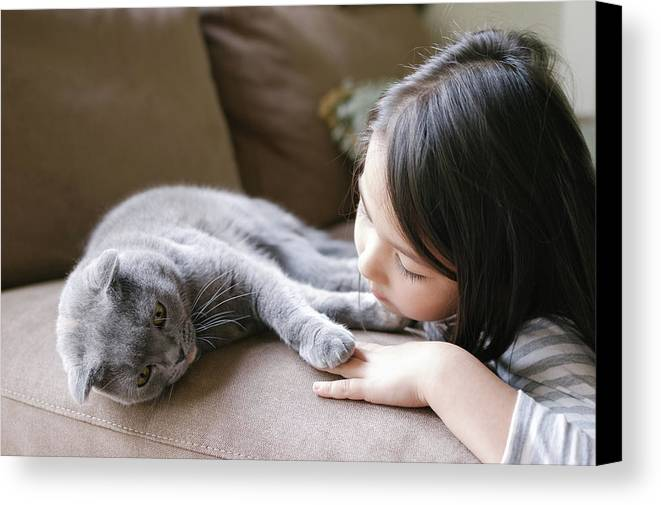 Scottish Fold Cat Canvas Print featuring the photograph Little Girl Hanging Out With Her Scottish Fold Cat by Bradley Hebdon