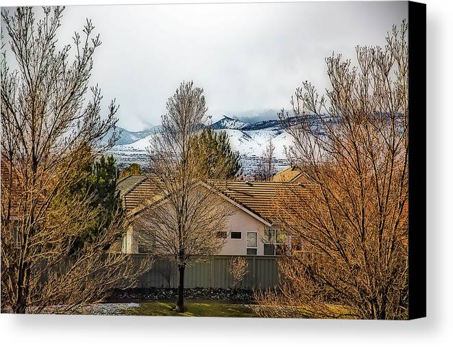 Trees Canvas Print featuring the photograph Look To The Hills by Nancy Marie Ricketts