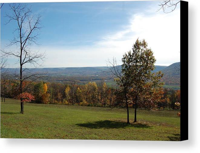 Fields Canvas Print featuring the photograph Looking At Fall Colors In The Field by Richard Botts
