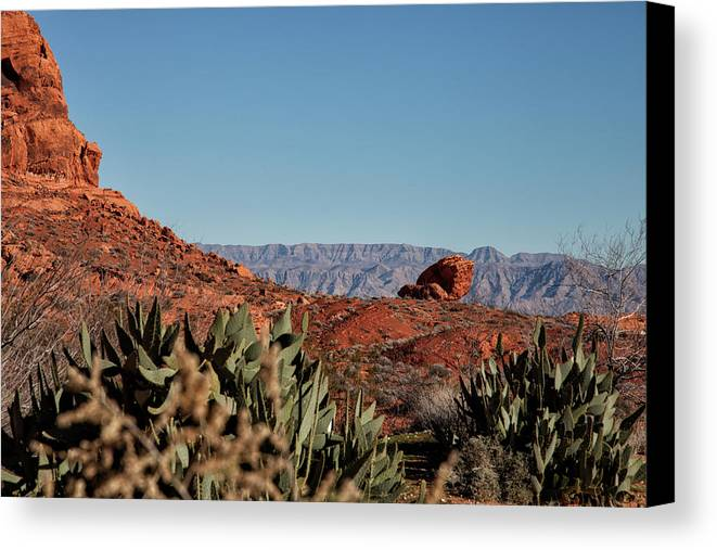 Landscape Canvas Print featuring the photograph Looking Beyond by Mike Kelso