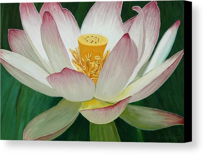 Flower Canvas Print featuring the painting Lotus Of Awakening by Allan OMarra