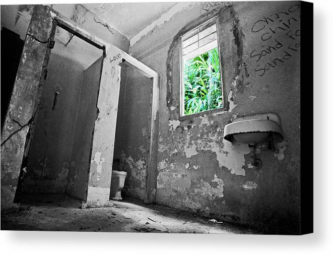 Love Canvas Print featuring the photograph Love by Karl Manteuffel