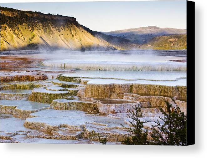 Chad Davis Canvas Print featuring the photograph Mammoth Hot Springs by Chad Davis