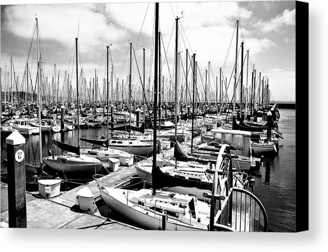 Sailing Canvas Print featuring the photograph Marina In Black And White by Sean Gillespie
