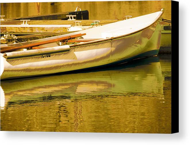 Abstract Landscape Canvas Print featuring the photograph Matin Printemps by Mary Mansey