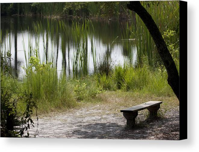 Pond Canvas Print featuring the photograph Meditation Spot By A Pond by Tina B Hamilton