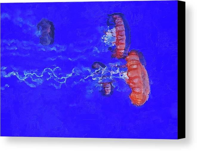 Medusas Jellyfishes Canvas Print / Canvas Art by PixBreak Art