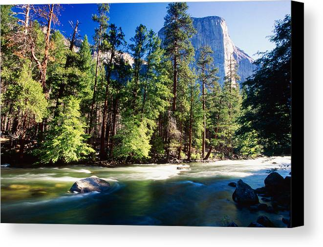 California Canvas Print featuring the photograph Merced River With The El Capitan Yosemite National Park California by George Oze