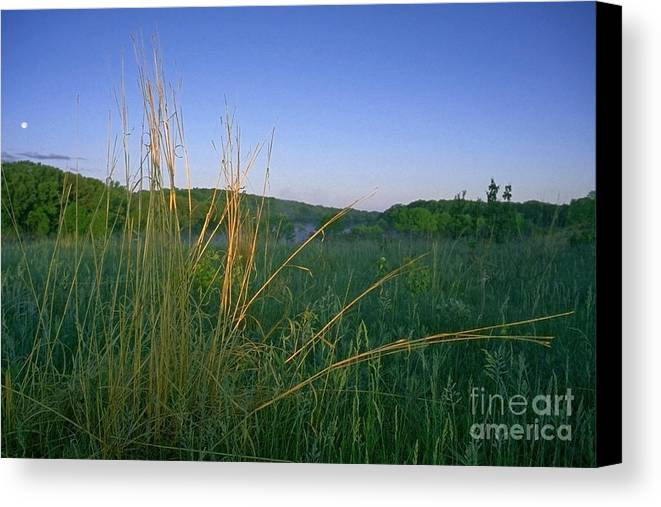 Prairie Canvas Print featuring the photograph Minnesota Prairie Moon Rise by Sven Brogren