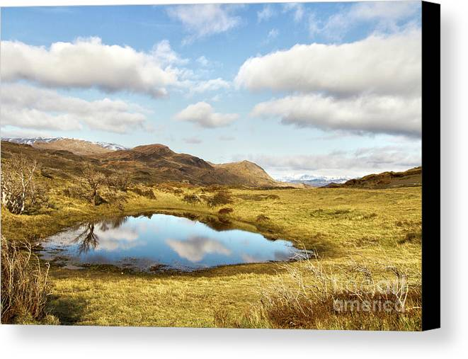 Nature Canvas Print featuring the photograph Mirror by Mirko Chianucci