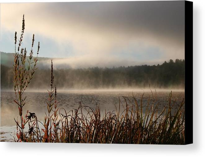 Misty Morning Canvas Print featuring the photograph Misty Morning by Linda Russell