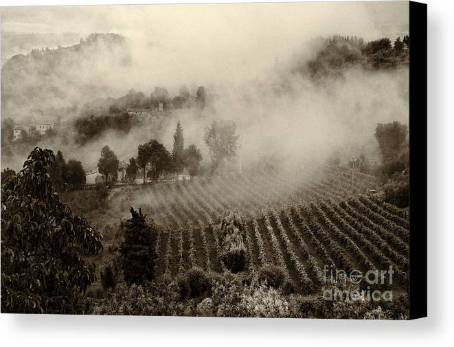 Tuscany Canvas Print featuring the photograph Misty Morning by Silvia Ganora