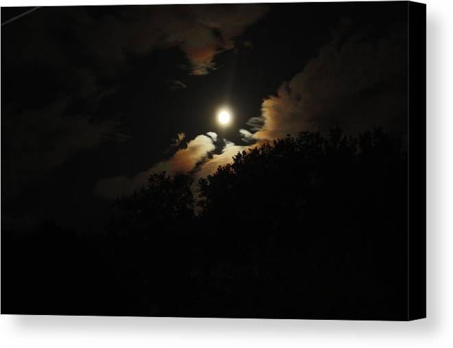 Moon Canvas Print featuring the photograph Moonshine by Paula Coley