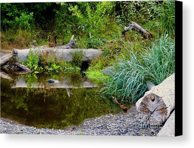 Reflection Canvas Print featuring the photograph Morning Reflection by Craig Wood