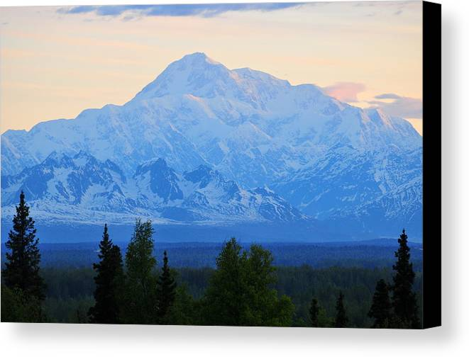Mount Mckinley Canvas Print featuring the photograph Mount Mckinley by Keith Gondron