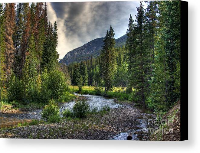 Landscape Canvas Print featuring the photograph Mountain Stream 4 by Pete Hellmann