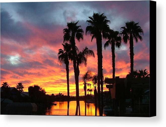 Sunset At The Islands Canvas Print featuring the photograph My Backyard by Dan Hausel