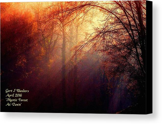 Rural Canvas Print featuring the painting Mystic Forest At Dawn L A by Gert J Rheeders
