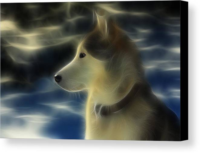 Dog Canvas Print featuring the photograph Nanuk Husky Fractal by Marjorie Imbeau