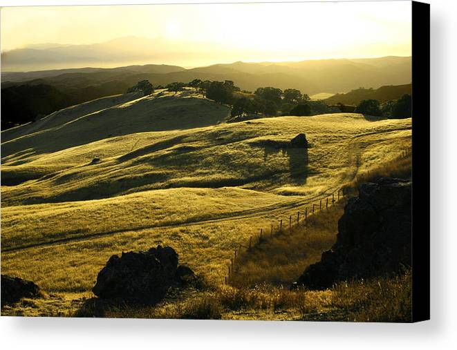 Nappa Valley Canvas Print featuring the photograph Napa Valley by Hans Jankowski