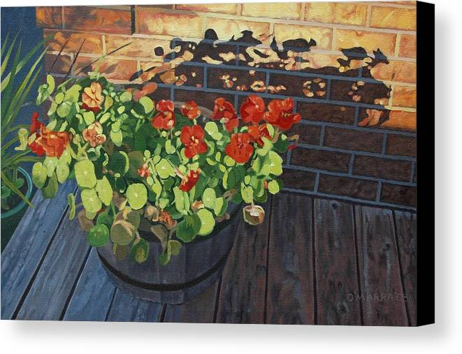 Flowers Canvas Print featuring the painting Nasturtiums In Late Light by Allan OMarra