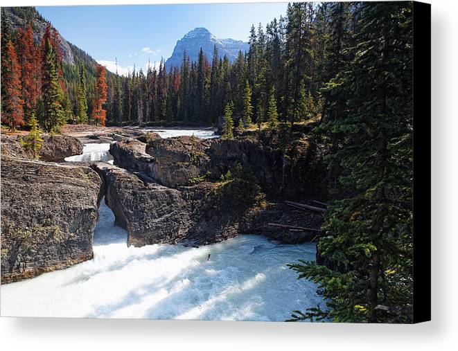 British Columbia Canvas Print featuring the photograph Natural Bridge On The Kicking Horse River by George Oze
