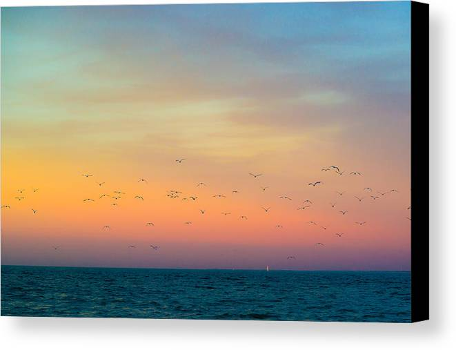 Lake Huron Canvas Print featuring the photograph Night Flight by Kristin Hunt