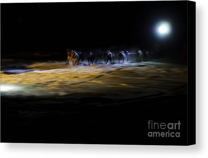 Iditarod Mush Musher Mushhing Sled Dog Dogs Racing Dark Headlamp Canvas Print featuring the photograph Night Runners by Chip Laughton