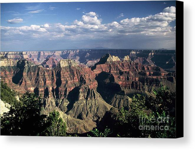 Grand Canyon; National Parks Canvas Print featuring the photograph North Rim by Kathy McClure