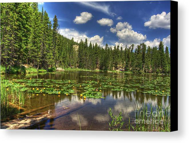 Nymph Canvas Print featuring the photograph Nymph Lake 2 by Pete Hellmann