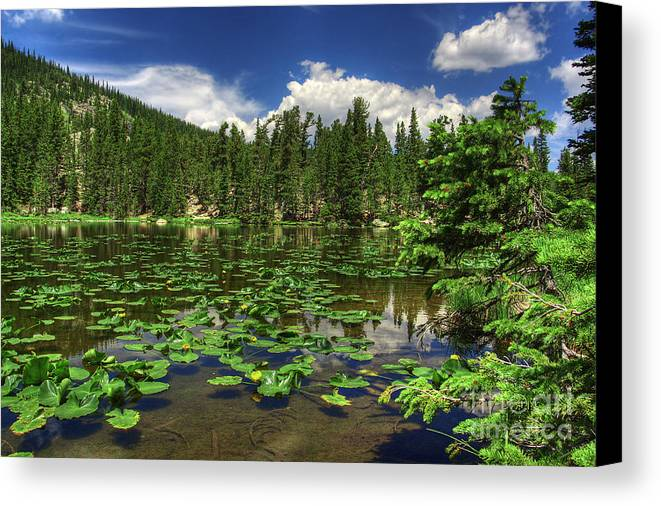 Landscape Canvas Print featuring the photograph Nymph Lake by Pete Hellmann