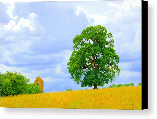 Oak Canvas Print featuring the photograph Oak And Barn by Gordon James