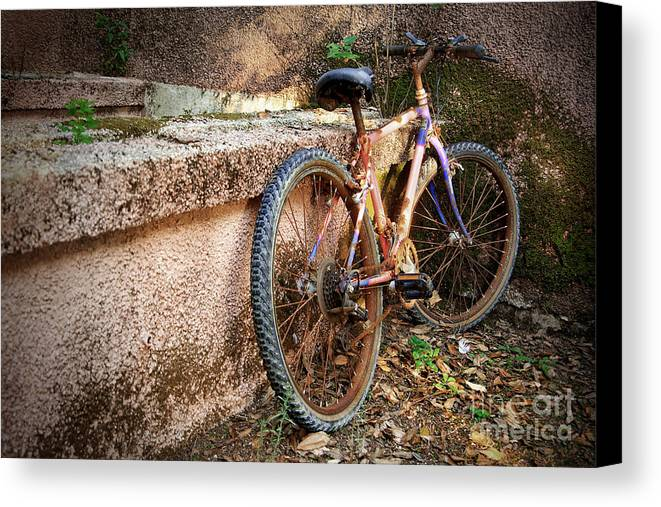 Bicycle Canvas Print featuring the photograph Old Bycicle by Carlos Caetano