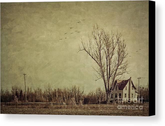 Aged Canvas Print featuring the photograph Old Rural Farmhouse With Grunge Feeling by Sandra Cunningham