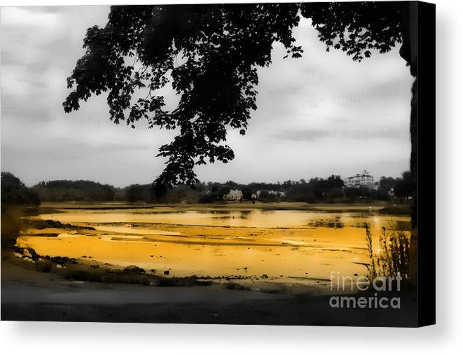 Marcia Lee Jones Canvas Print featuring the photograph On Golden Pond by Marcia Lee Jones