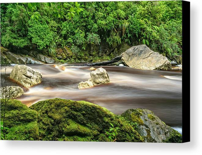 Karamea Canvas Print featuring the photograph Oparara River by Robert Green