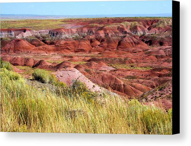 Photography Canvas Print featuring the photograph Painted Desert 0242 by Sharon Broucek