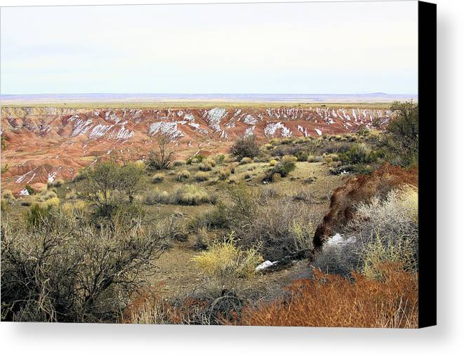 Photography Canvas Print featuring the photograph Painted Desert Winter 0571 by Sharon Broucek