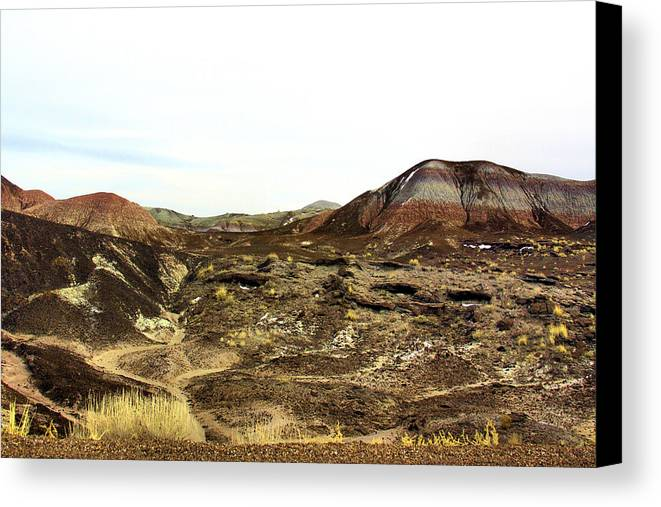 Photography Canvas Print featuring the photograph Painted Desert Winter 0583 by Sharon Broucek
