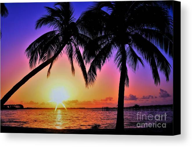 Palm Bliss Canvas Print featuring the photograph Palm Bliss by Lisa Renee Ludlum