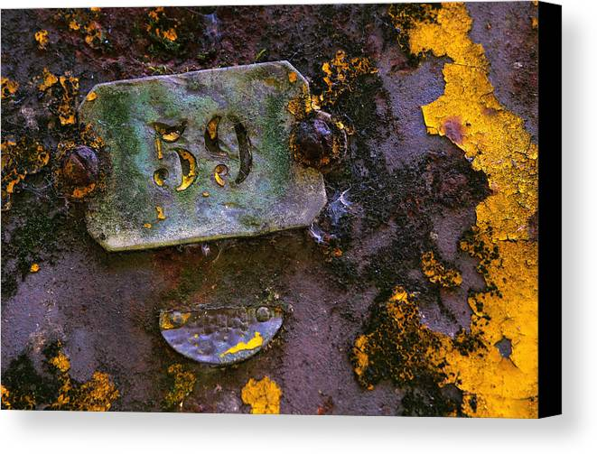 Background Canvas Print featuring the photograph Plate 59 by Carlos Caetano