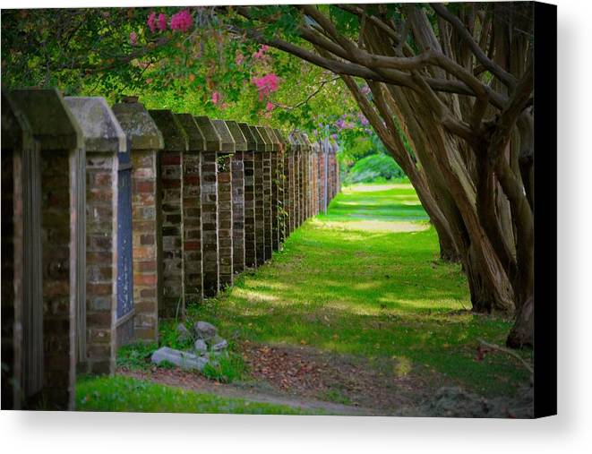 Beautiful Path Canvas Print featuring the photograph Positive Path by Francis Palladino