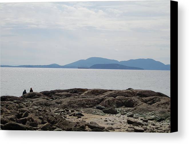 Islands Canvas Print featuring the photograph Puget Sound Islands by J D Banks