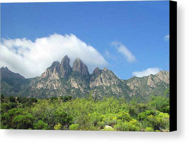 Lonely Road Canvas Print featuring the photograph Organ Mountains Rabbit Ears by Jack Pumphrey