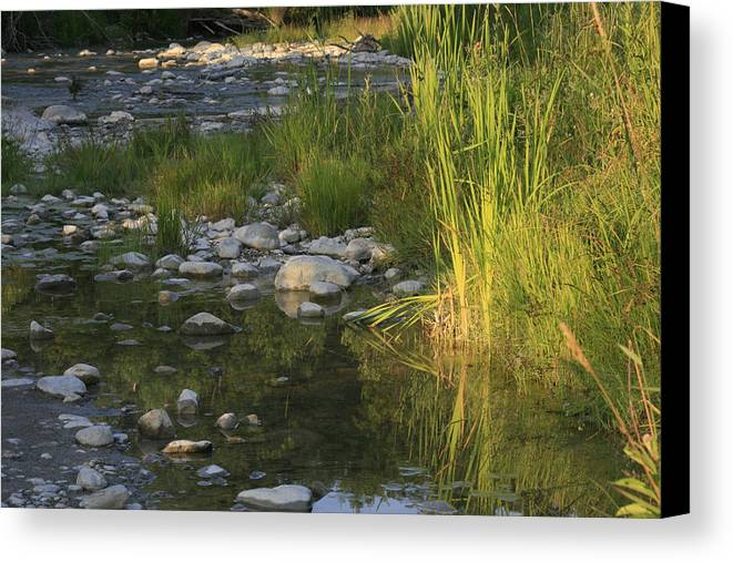 River Canvas Print featuring the photograph Ramble by Alan Rutherford
