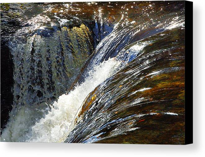 Water Canvas Print featuring the photograph Ravenskill Falls by Francesa Miller
