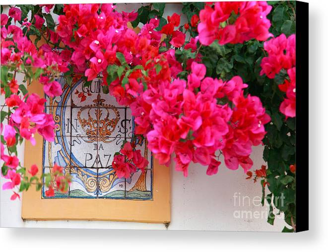 Bougainvilleas Canvas Print featuring the photograph Red Bougainvilleas by Gaspar Avila