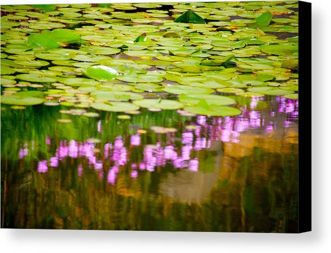 Floral Canvas Print featuring the photograph Reflected Flowers And Lilies by Paul Kloschinsky